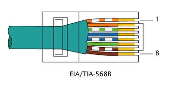 350px-RJ-45_TIA-568B_Right